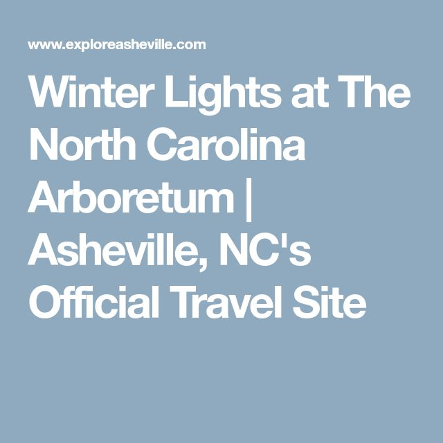 Winter Lights at The North Carolina Arboretum | Asheville, NC's Official Travel Site