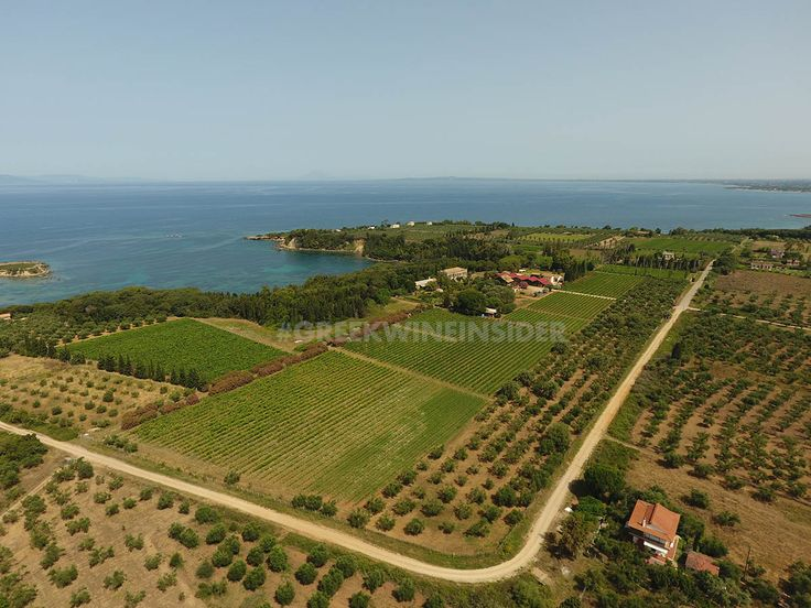 Mercouri Estate, Korakochori, Peloponnese, Greece