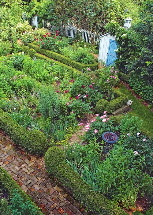 rustic kitchen garden with low boxwood hedges herbs flowers rose topiary bird bath on kitchen garden id=41800