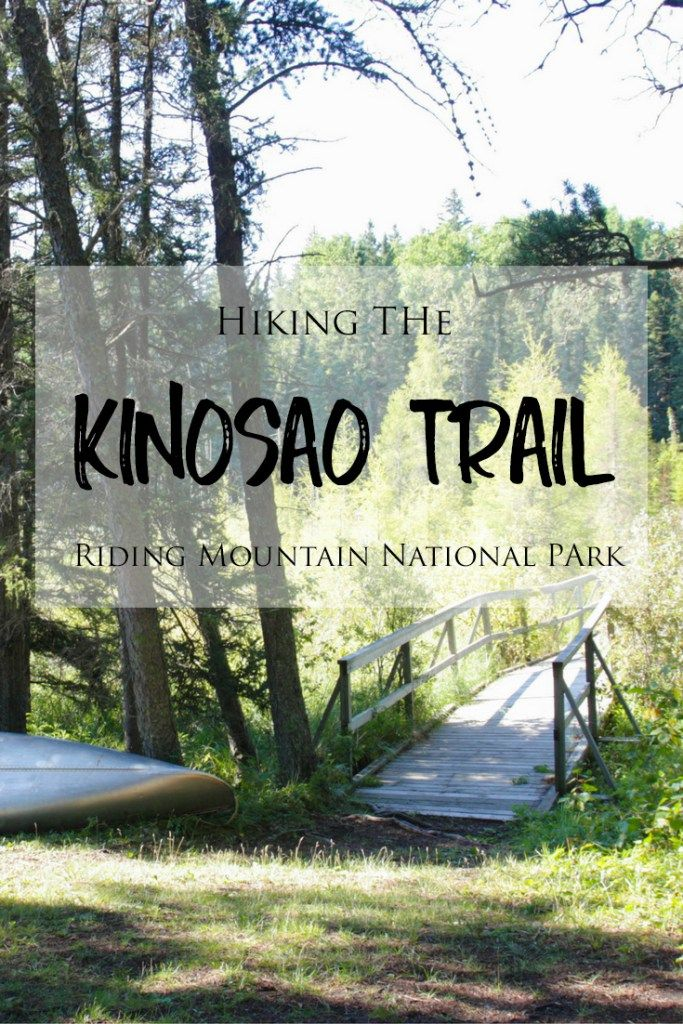 Hiking the Kinosao Trail in Manitoba's Riding Mountain National Park >> The Kinosao Trail is a lovely trail that passes through densely wooded forests and leads to the gorgeous and serene Lake Kinosao. It is a short and easy hike in Riding Mountain and is perfect for those looking for beautiful scenery and landscapes!