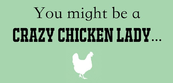 Funny Chicken Signs: Best 25+ Chicken Quotes Ideas On Pinterest