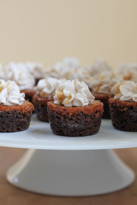 Mini pumpkin pies baked into a fabulous gingersnap cookie cup and topped with pumpkin pie spice whipped cream! These bite-sized desserts are the perfect way to end your Thanksgiving dinner!