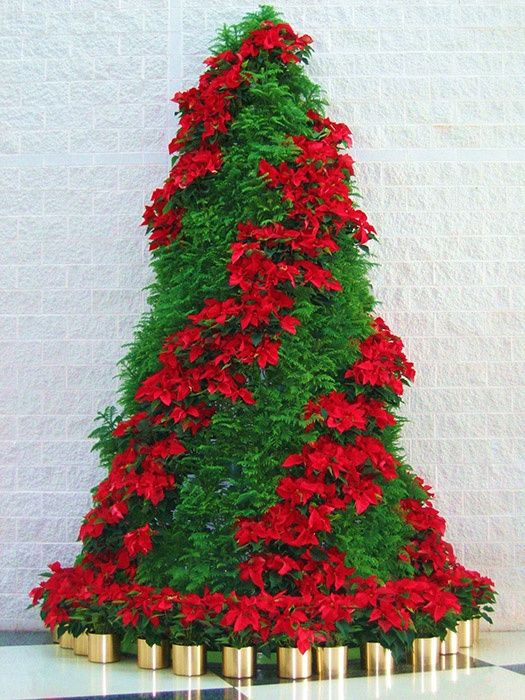 Holiday Decor Plant Gallery by Interior Plantscape in Greenville, Charlotte, Columbia, & Charleston