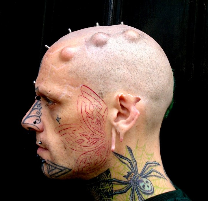 269 Best Body Modification Images On Pinterest: 30 Best Images About BODY MOD On Pinterest