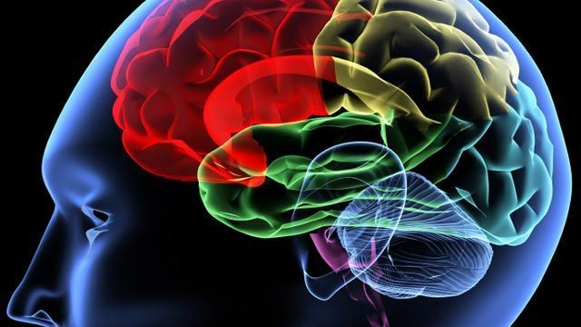 Lost sleep leads to lost brain cells, says study  http://www.foxnews.com/health/2014/03/19/lost-sleep-leads-to-lost-brain-cells-says-study/