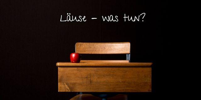 Schon wieder Läuse? Was nun zu tun ist, erfahrt ihr auf dem Blog Lari Lara.