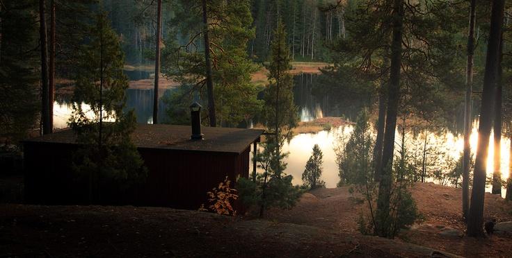 """nuuksio afternoon"" by Jon Packer, via 500px.  Finland."