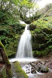 Fairway Waterfall in Novato