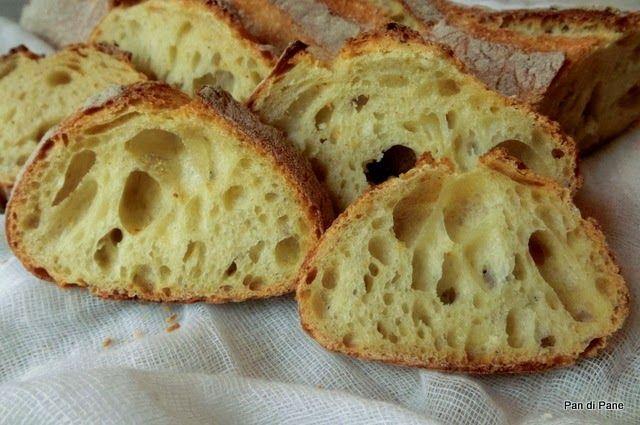 """Pan di Pane: Pane di Semola Rimacinata """"Pura"""" - Sperimentato: cotto su pietra refrattaria, ottimo"""