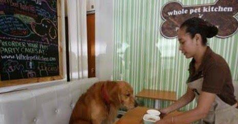 Εστιατόριο σερβίρει ανθρώπους και ζώα!