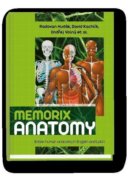 Memorix Anatomy - Entire human anatomy in English and Latin #WorkbookStudyGuide