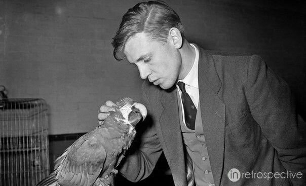 Young Sir David Attenborough, unbelievably handsome
