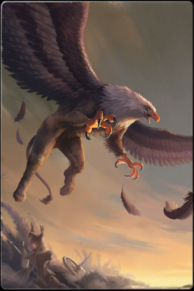 Grifo son seres voladores muy feroces mitad le n y for The griffin