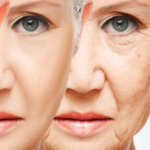 ¿Cómo prevenir el envejecimiento a través de una vacuna?