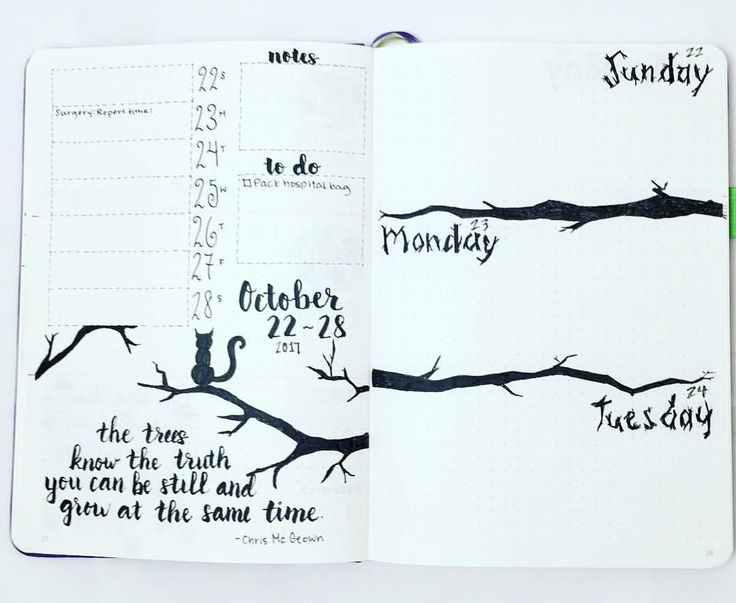 Beautiful weekly bullet journal spread finishing up the weekly layouts for October's tree theme. Great inspirational ideas to try for your bujo!