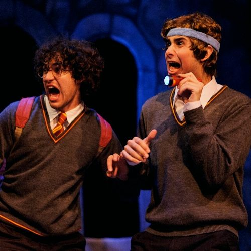 Harry Potter musical!