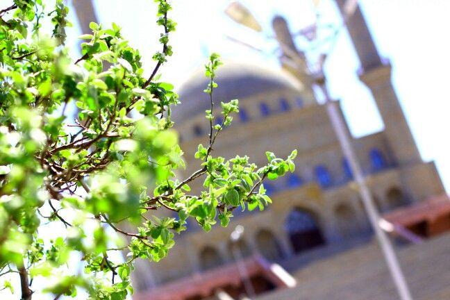 #baku #nardaran #mosque #holly #shrine