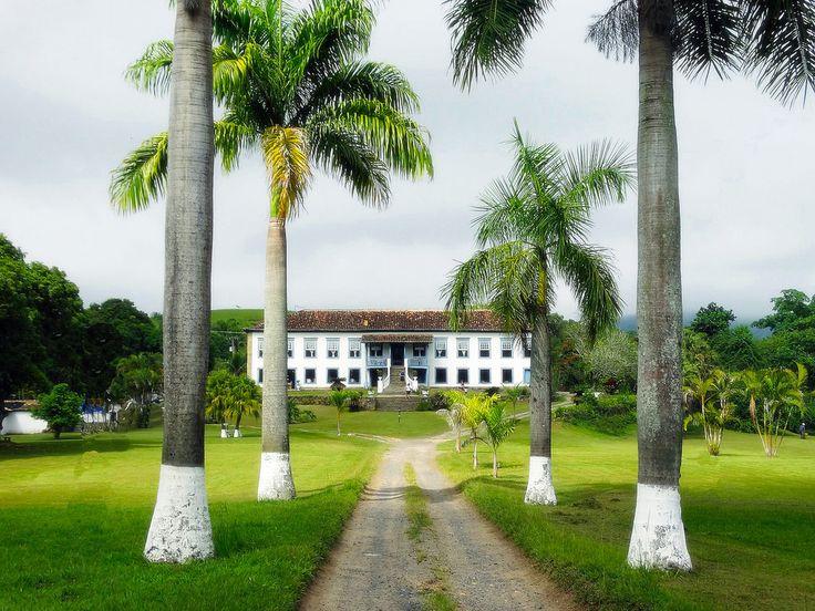 Hotel Fazenda Boa Vista – Bananal (SP) clique na foto para ver o álbum (8 fotos)  A alameda de palmeiras imperiais conduz à enorme escadaria central e o casarão de 1780, que levou mais de 100 anos para ser concluído.