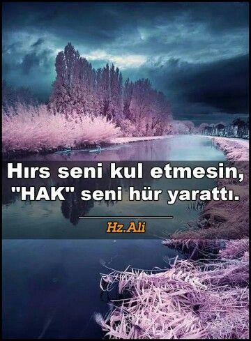 H.z Ali