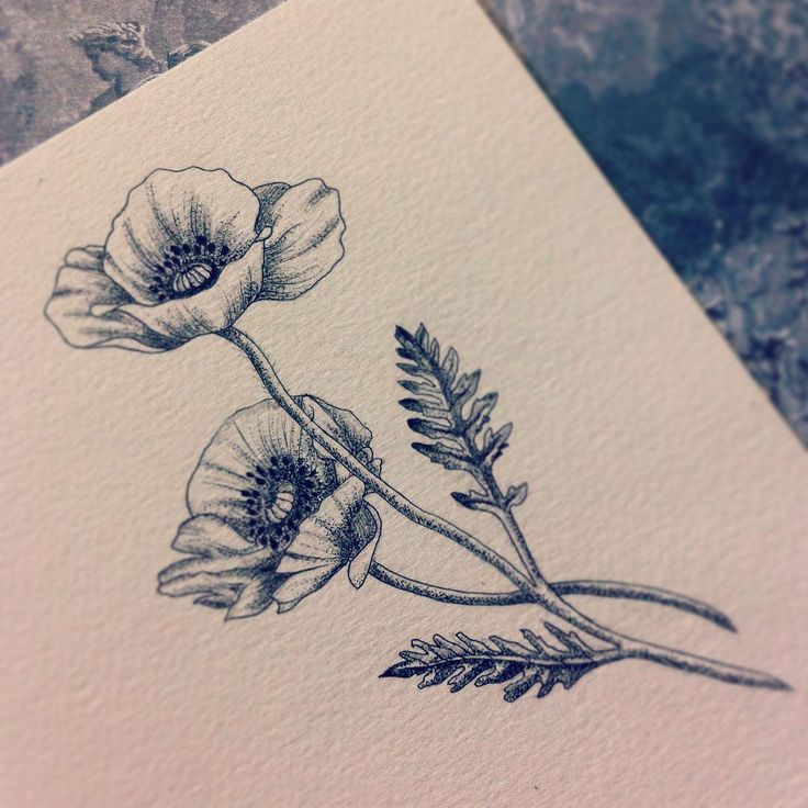 Poppy tattoo design
