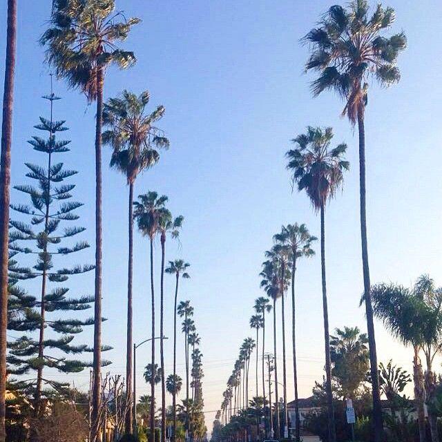 New apartment, new street #beverlyhills #california #travel