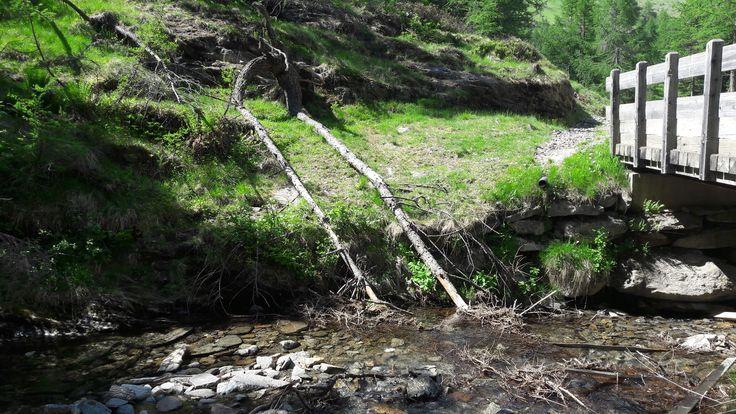 Milyen érdekes természeti jelenség...talán lakik ott valaki? A környékén keskeny mini ösvények futnak...tele páfránnyal és a kövek között apró bemélyedések, mint valami mini barlangok...jó érzés volt a közelében tartózkodni.
