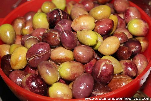 Como aliñar aceitunas paso a paso. www.cocinandoentreolivos (41)