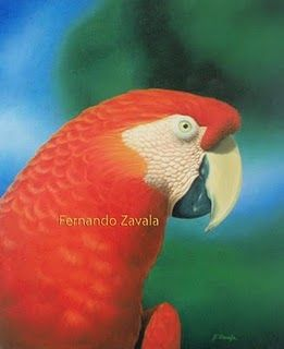 FERNANDO ZAVALA (PERÚ) Fernando Zavala, Ilustrador Naturalista desde 1995, en…