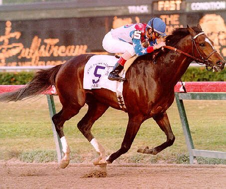 Cigar  Horse of the Year (1995 & 1996) * Eclipse Older Male Horse (1995 & 1996) * National Museum of Racing and Hall of Fame (2002) * Racehorse of the Decade of the 1990s    http://www.pedigreequery.com/cigar2