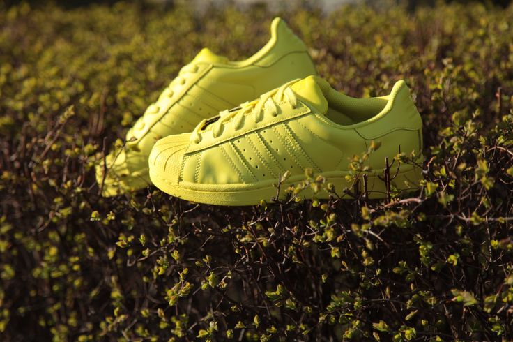 So spring! #adidas #Superstar #Supercolor #adidasOriginals #Sizeer #sneakerOn #sneakers #streetwear #PharrellWilliams
