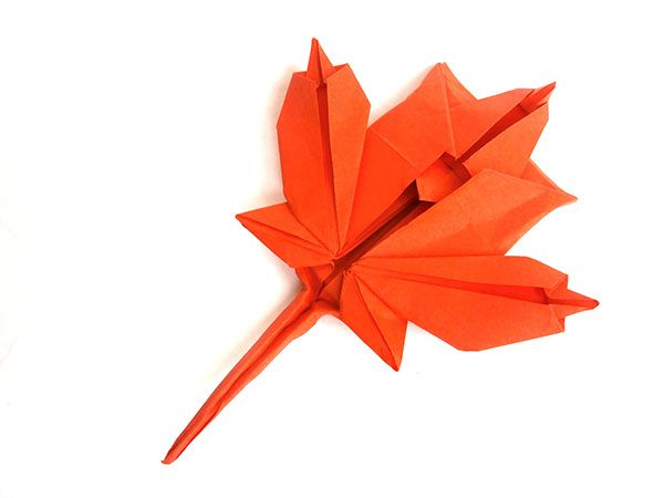 271 best images about origami leaves on Pinterest | How to ... - photo#29