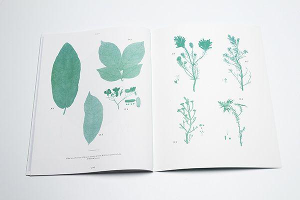 Deyrolle magazine by Marie-Lise Leclerc, via Behance