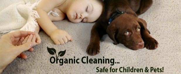 is also important to explore all the harsh chemicals used in commercial cleaning because they are hazardous to everyone. Children are more susceptible to allergies related to chemical cleaner, and if swallowed, they can be harmful to pets at home. Using our service and the organic solution is a great way to make your home or office environmentally look friendly.