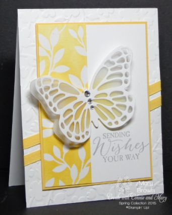 Butterfly Basics and Butterfly Thinlits, Stampin Up Irresistibly Yours DSP sponged,
