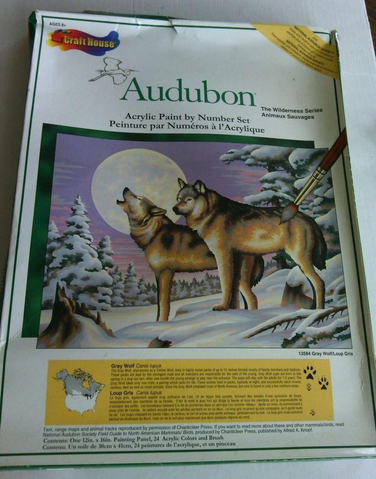 Artist Craft Paint By Number Set Acrylic House Audubon The Wilderness Series Num | eBay