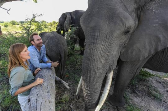 Close to the giants of the bush at Abu Camp (Okavango Delta, Botswana). Wanna visit that fantastic place? Just let us know: info@gondwanatoursandsafaris.com