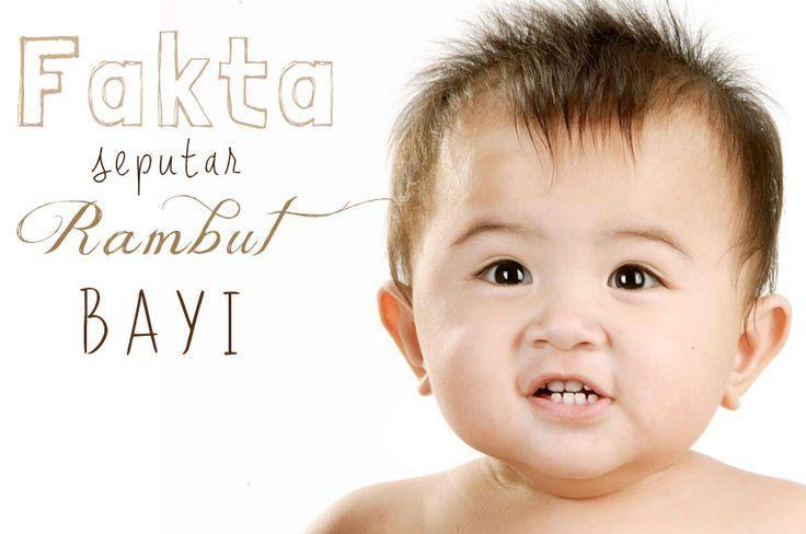 Facts about Baby's Hair kenali berbagai fakta tentang rambut Bayi.