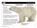 Feb. 27 is Polar Bear Day! Project this mini-lesson on your whiteboard to introduce animals of the Arctic. Students will learn about the interesting adaptations that help some Arctic animals survive.