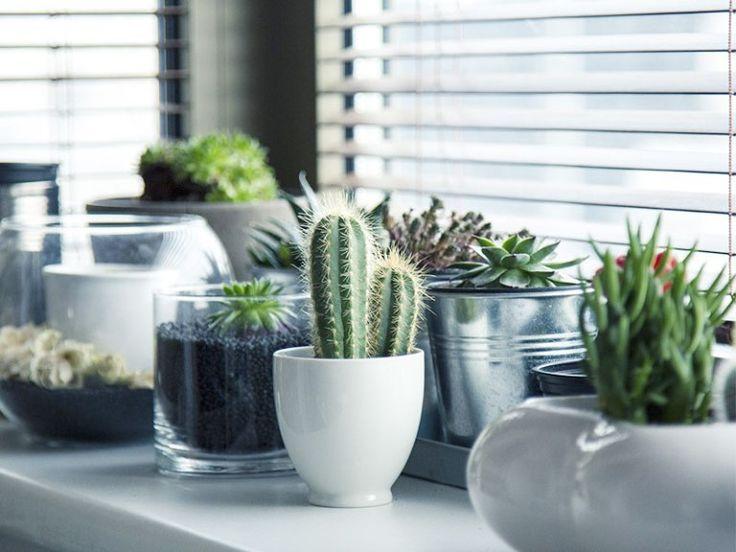 D sencombrer sa maison comment et pourquoi organisation jardin int rieur d sencombrer sa - Desencombrer sa maison ...