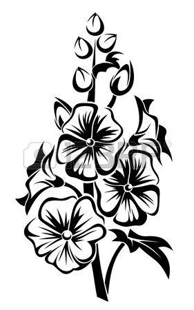 Черный силуэт мальвы цветов. photo