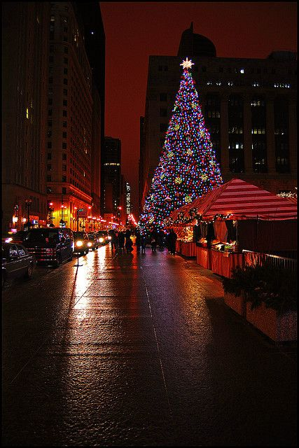 Daley Plaza Christmas Tree, Chicago. Oh how I love Christmas time in Chicago! <3