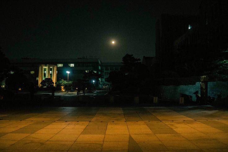 중앙도서관 앞