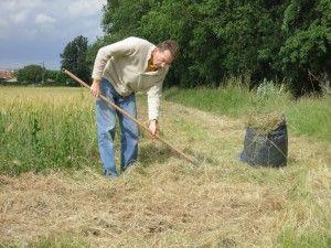 PAILLIS Ramassage d'herbes sèches fauchées par la commune