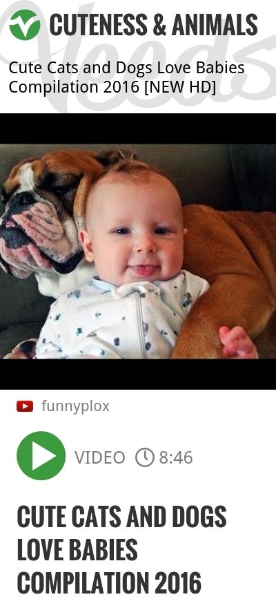 Cute Cats and Dogs Love Babies Compilation 2016   http://veeds.com/i/5c_ayoPeLZ_Y1rV9/cuteness/