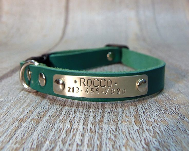 Green leather Collar, Cat Collar, Dog Collar, Small Dog Collar, Cat Collar Breakaway, Cat collar personalized, Personalized Dog Collar, by VacForPets on Etsy