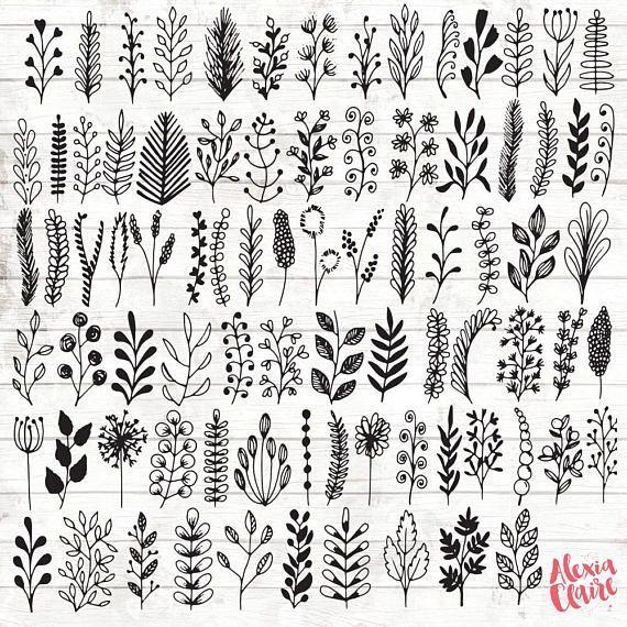 Leaf Botanical Clipart – 84 Hand Drawn Leaf branches Clipart – Leaf Logo Art – Botanical Logo Elements – botanical Illustration – ACGABW13