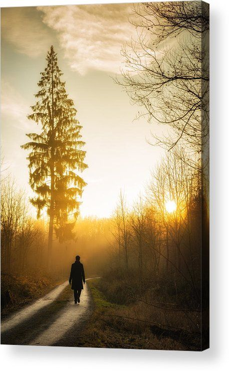 Sunset Path Acrylic Print for sale. Warm and beautiful evening light, sunset is waiting. A person is walking on a forest path, beautiful tree in the background. Lovely landscape in the nature park Schönbuch in Germany. The image gets printed directly onto the back of a sheet of clear acrylic. The image is the art - it doesn't get any cleaner than that! Matthias Hauser - Art for your Home Decor and Interior Design.