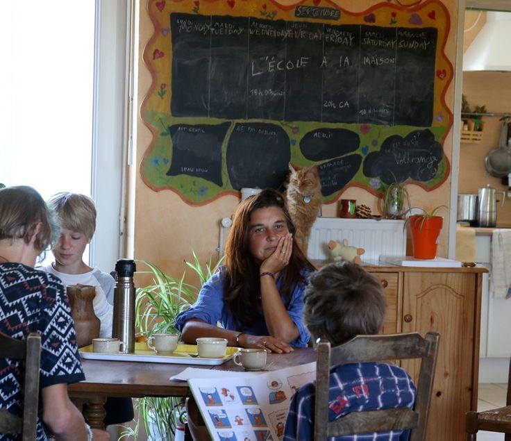 Passée l'effervescence de la rentrée, zoom sur ces familles qui ont choisi de ne pas inscrire leurs enfants à l'école pour les instruire en famille. En Haute-Garonne, on compte 350 enfants dans ce cas.  Les appellations varient, on parle tantôt de...