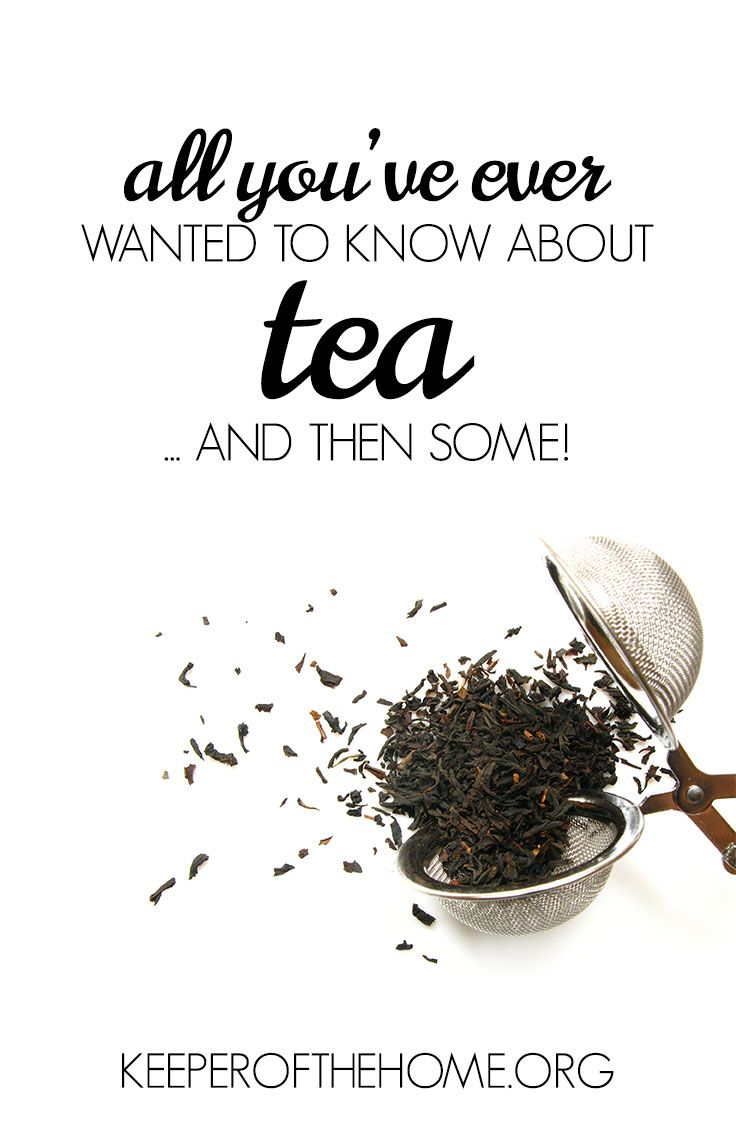 Have you ever wondered what the big deal is about tea? Can't seem to brew a cuppa that you enjoy? Here's everything you've ever wanted to know all about brewing tea and then some!