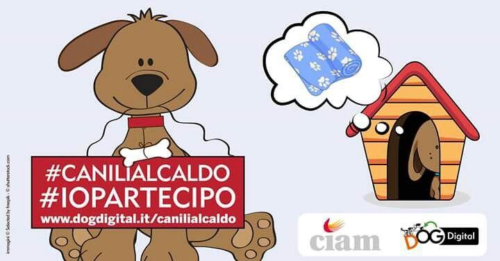 #canilialcaldo #iopartecipo